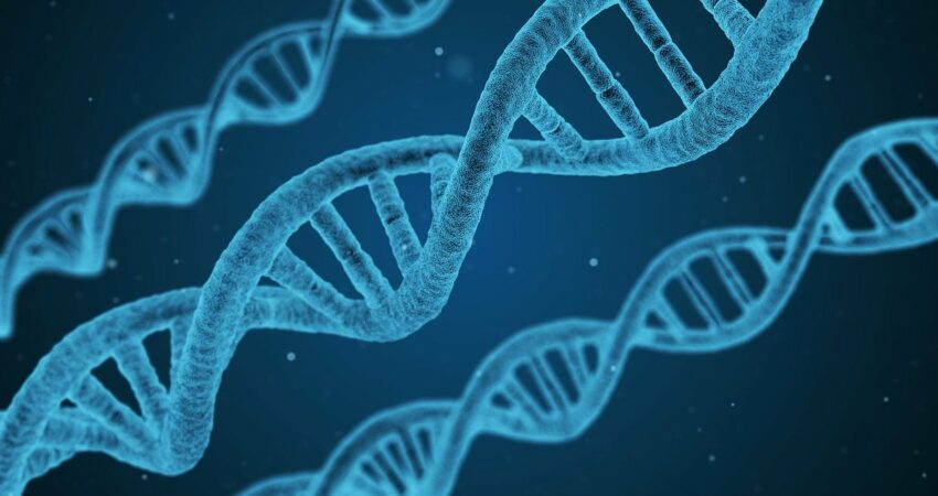 DNS-Stränge